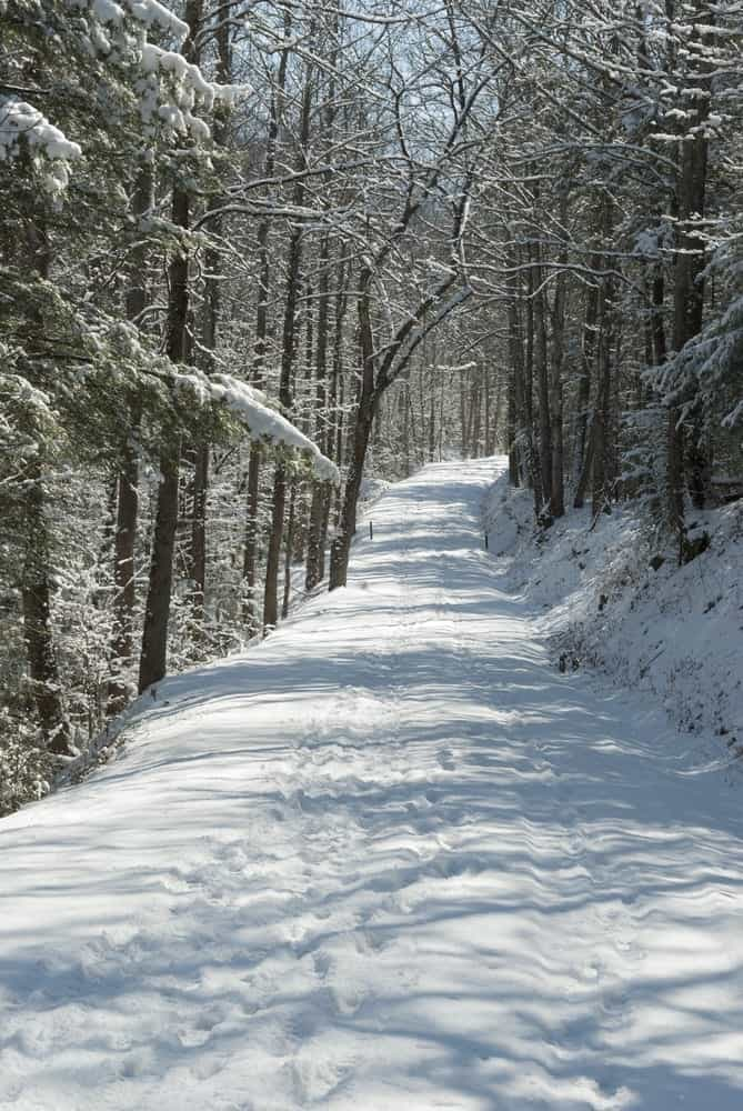 Fox News Recognizes the Great Smoky Mountains National Park as Top Winter Destination