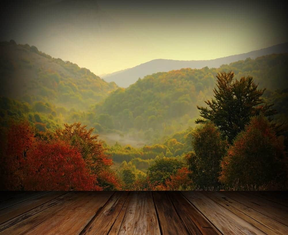 Reasons to Choose a Private Secluded Cabin in Gatlinburg for Your Vacation