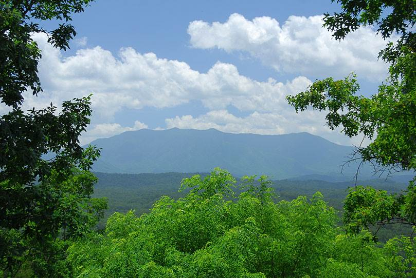 Interesting Facts about the Smoky Mountains