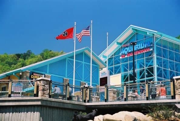 Ripley's Aquarium of the Smokies in Gatlinburg.