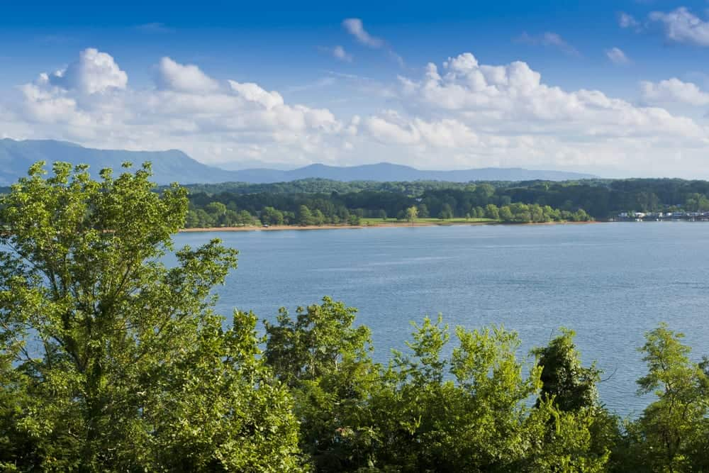 Top 4 Reasons to Spend a Day at Douglas Lake TN on Your Smoky Mountain Vacation
