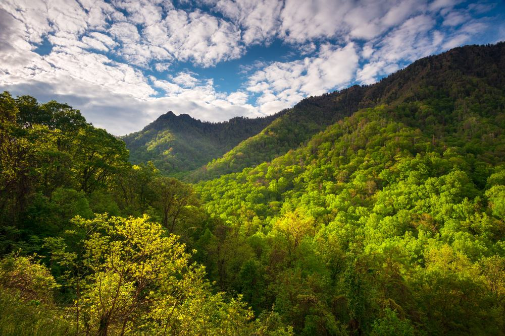 Top 3 Reasons You Should Honeymoon in the Smoky Mountains
